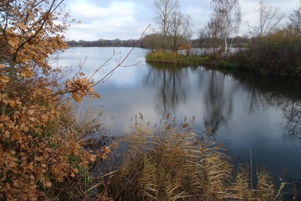 Natuurgebied Fuldaaue in Kassel
