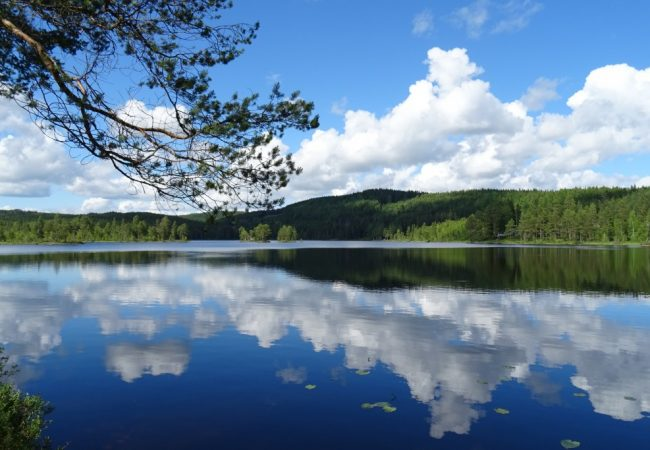 Fotoblog | Ons weekje in Värmland (2)