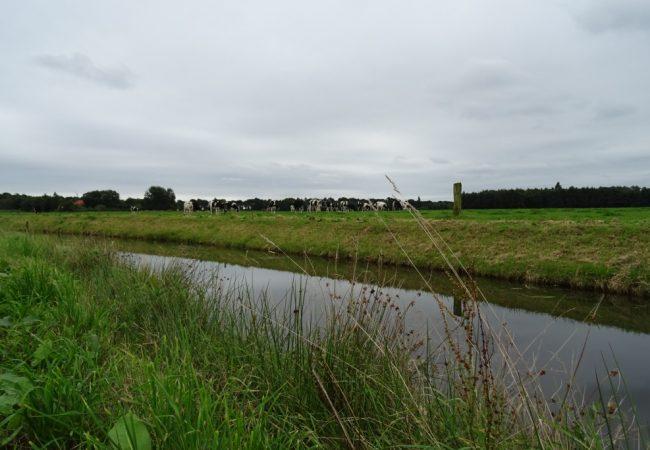 Wandelen in Westerwolde