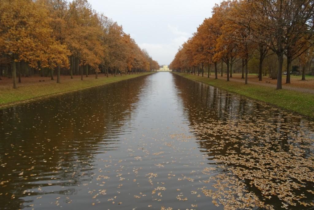 Orangerie Kassel november