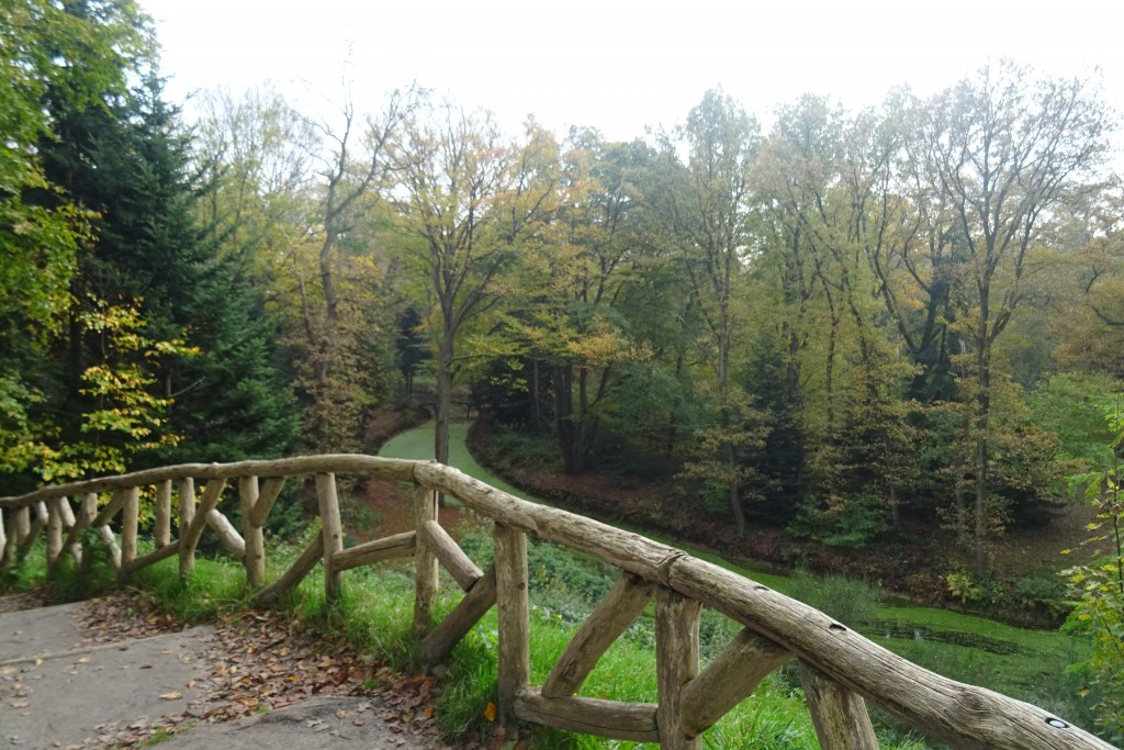 Het Overbos Fraeyelemaborg Slochteren herfst