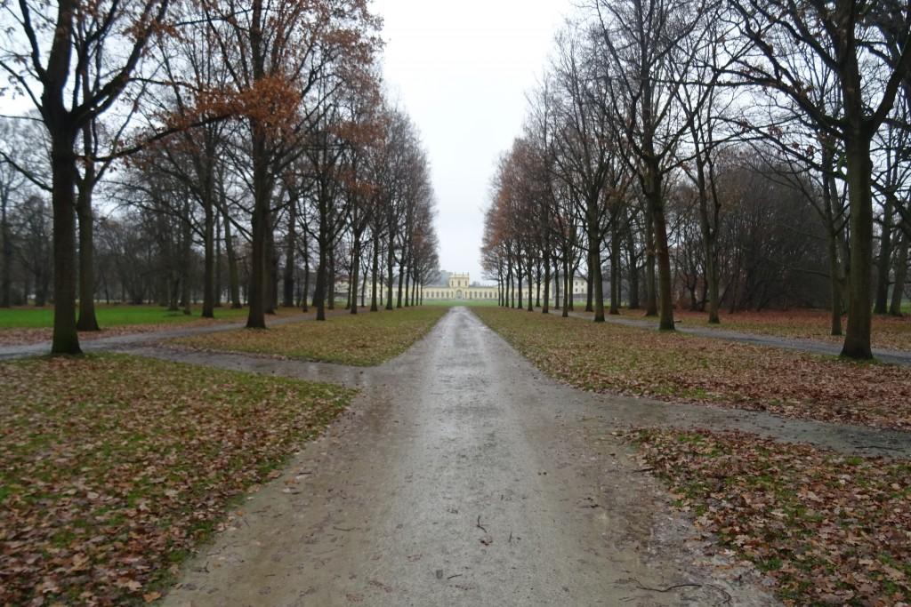 De Orangerie Karlsauwe Park Kassel