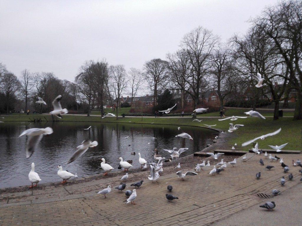 Noorderplantsoen Groningen winter