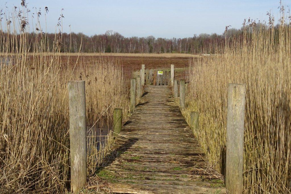 De Heemtuin Groningen
